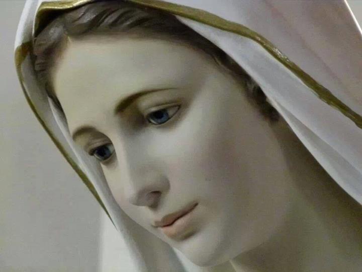 https://rosasparalagospa.files.wordpress.com/2013/12/gospa-7.jpg