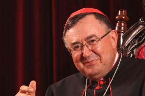 Cardenal Vinko Puljic